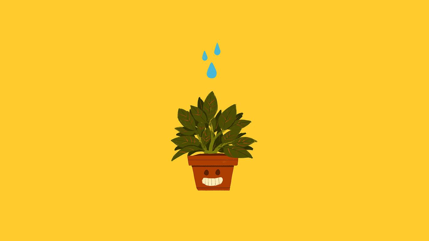 25-Plante